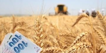 2018 yılı tarımsal desteklemeleri belirlendi!