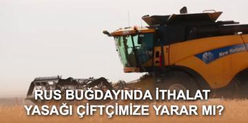 İthalat Yasağı Türk Buğday Çiftçisini Sevindirir Mi?