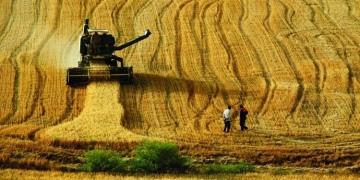 Milli Tarım Projesi 2017'de başlıyor!