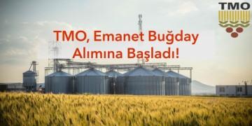 Toprak Mahsülleri Ofisi emanet veya taahhütname karşılığında buğday almaya başladı!