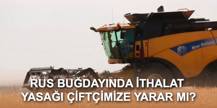 Buğday ithalatı Türk çiftçisine yarayacak